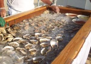 clams-413x288